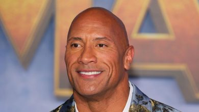 Photo of WWE superstar The Rock breaks his own security gate