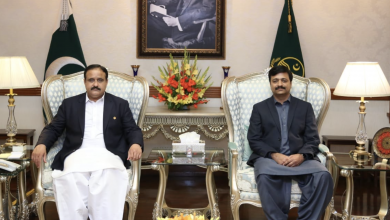 Photo of CM Punjab assures Aftab Ahmed full support for overseas Pakistanis