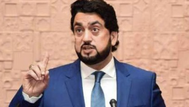 Photo of Regional peace linked to the right to self-determination to Kashmiris: Shehryar Afridi