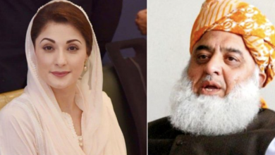 Photo of Maryam Nawaz, Fazlur Rehman suspend political activities after catching fever