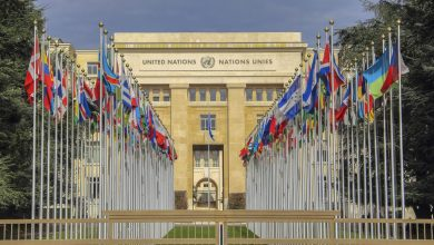 Photo of Pakistan gets elected to three Key United Nations bodies