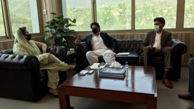Photo of Dr Fehmida Mirza meets Usman Dar