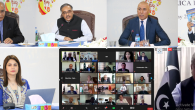 Photo of Institute of Strategic Studies organises a webinar on the occasion of Africa Day