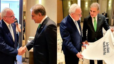 Photo of FM Qureshi meets Palestinian counterpart