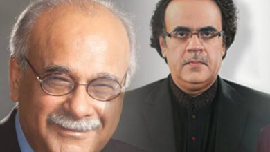 """Photo of Dr Shahid Masood apologises to Najam Sethi for """"35 punctures"""" allegations"""